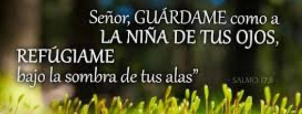 frases biblicas em portuguese imagens